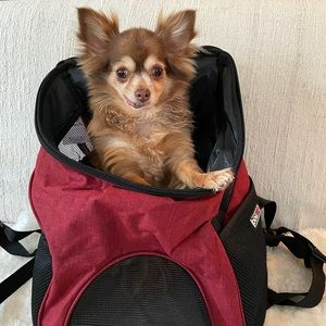 Pet carrier front or backpack